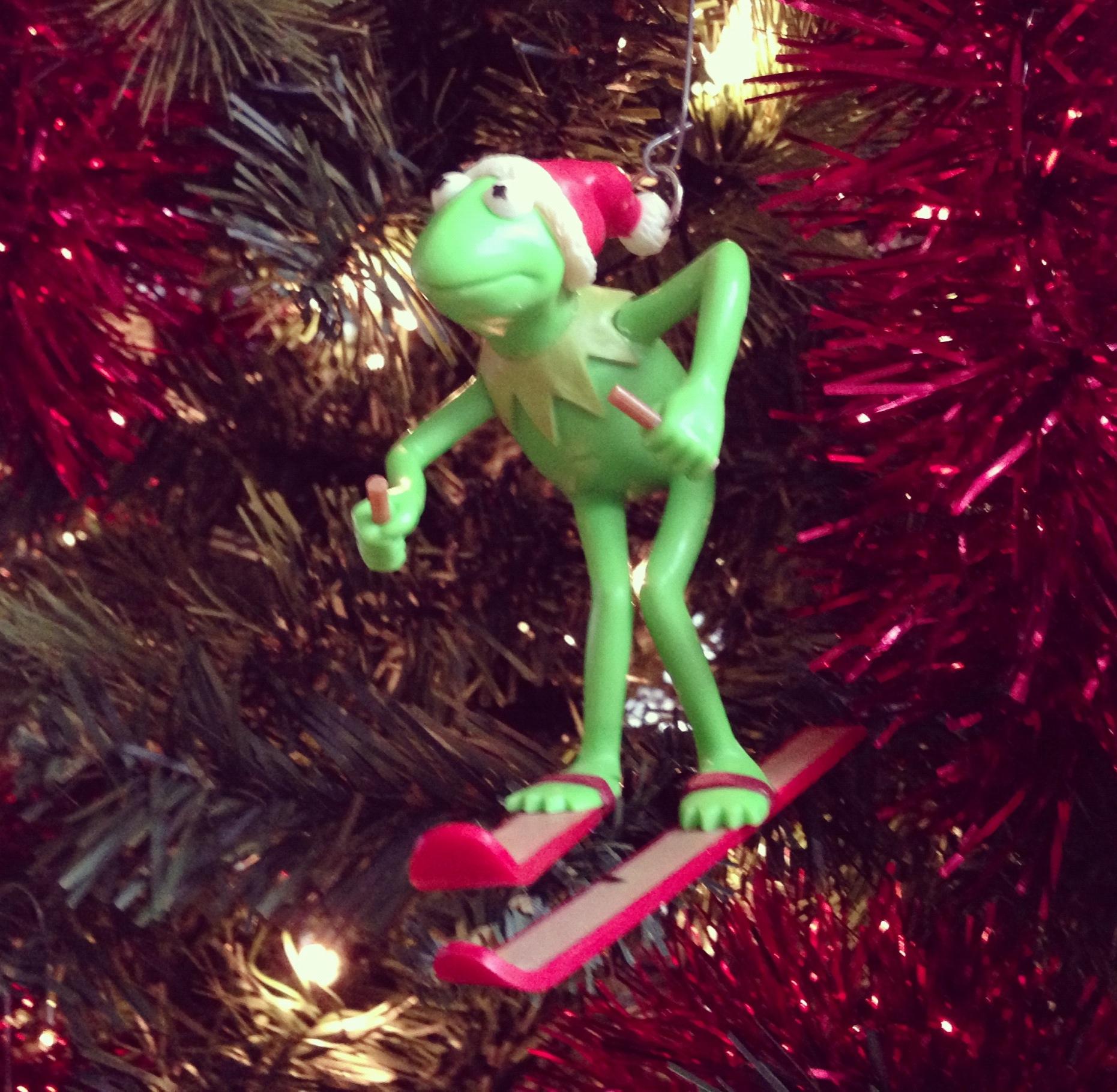 Kermit | Secret Dad Society