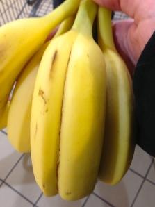 Conjoined bananas