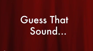 Guess That Sound #1