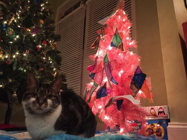 Guardian of the Santa Notes